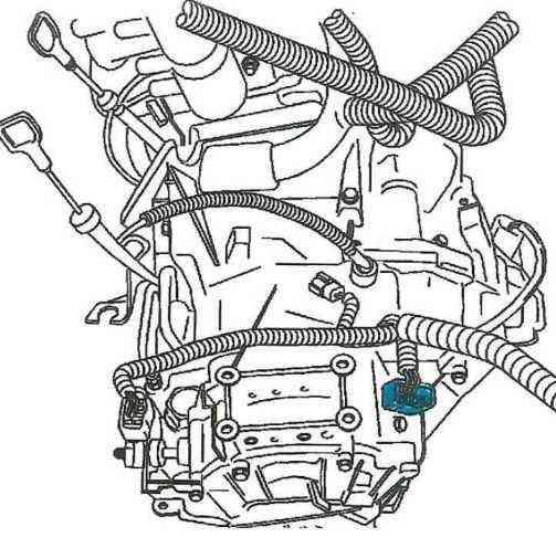 Name:  main transmission plug 2.jpg Views: 229 Size:  148.6 KB